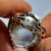 عکس ریز انگشتر مردانه عقیق شجر 175.4