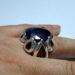 عکس ریز انگشتر مردانه یاقوت کبود 341.3