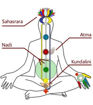 Diagramma Chakra Kundalini