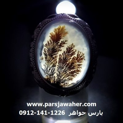 عقیق شجر ایرانی با منظره زیبا و سه بُعدی 205