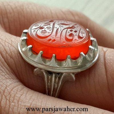 mohsen zarqami mashhad 8231