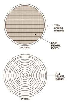 ساختار طبیعی مروارید