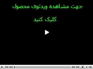 ویدئوی انگشتر نقره عقیق خطی چهار سلام میرزا